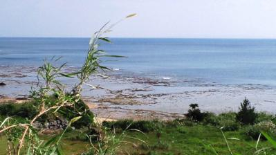 平穏な土浜3