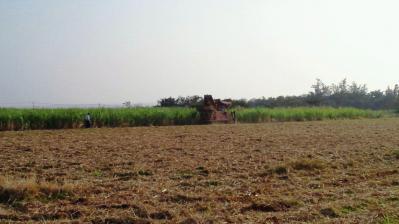 ハーベスタ収穫3