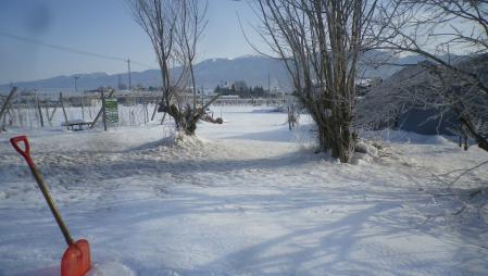 畑の雪かき (1)