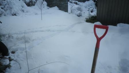 土蔵までの雪かき