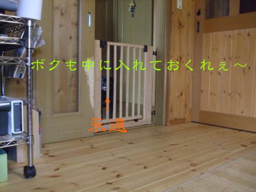 20120504003.jpg
