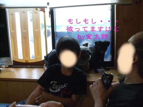 20120618008.jpg