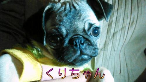 PicsArt_1358695530069.jpg