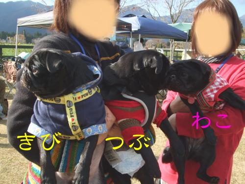 asagiri023.jpg