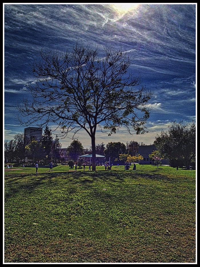 park11814.jpg