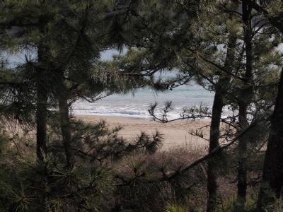 部屋から見た弓ヶ浜。