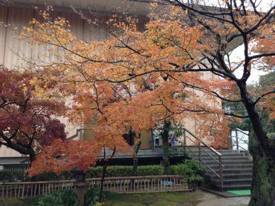 香雪美術館玄関
