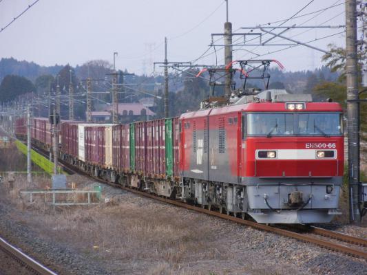 DSCN7676.jpg