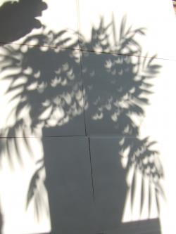 2012_0521_075905-DSCF3219_convert_20120521185726.jpg