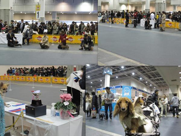 s-2012-12-02 fj1