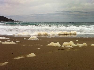 袖ヶ浜の波の花