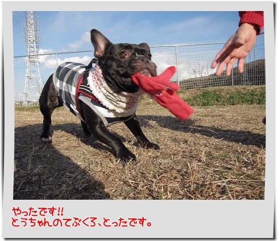 IMG_2163-4.jpg