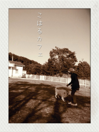 sazuki 022