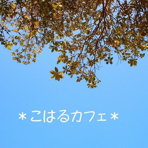 P2286104.jpg