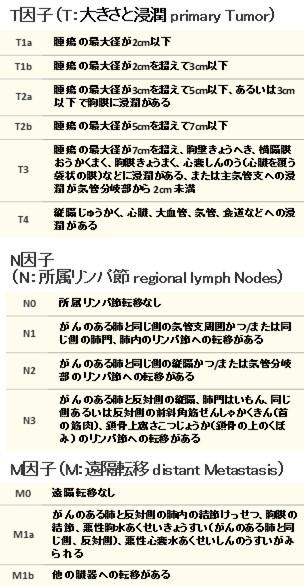 TNM分類