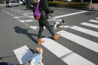 横浜ぶらり散歩1