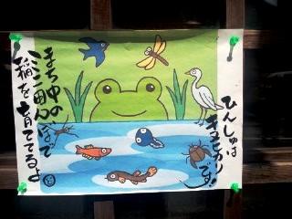 KOME山田屋まちなか田んぼ2012 ひんしゅはキヌヒカリです!