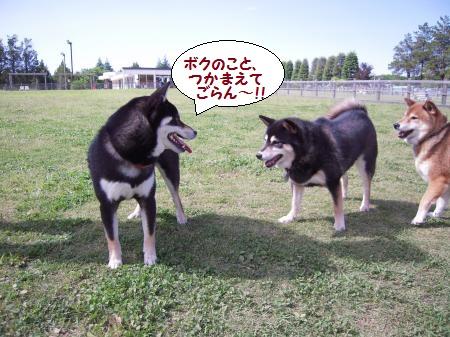 20120512-03.jpg