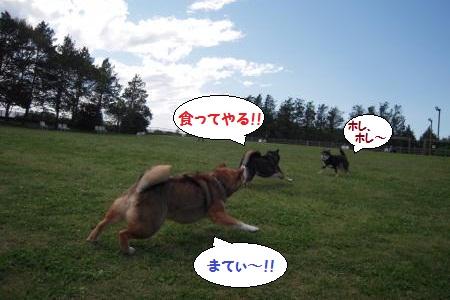 20120512-04.jpg