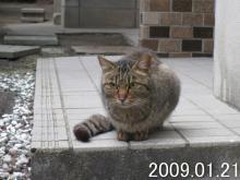 nagao090121a