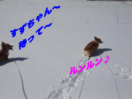 11_20140212105023f01.jpg