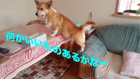 1_201401211832334f6.jpg