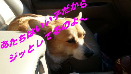 2_2014012413300866d.jpg