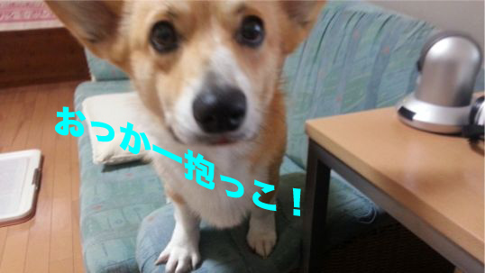 3_20140109110759bd9.jpg