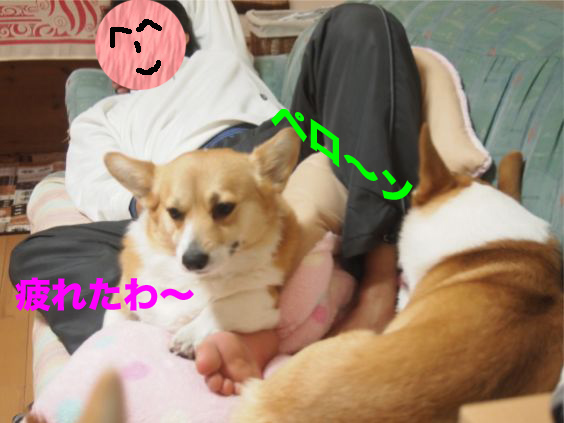 3_20140121180853227.jpg