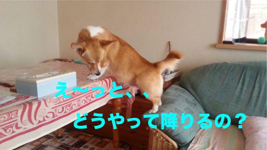 3_20140121183236eda.jpg