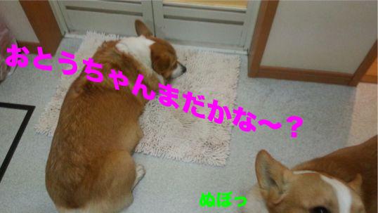 3_20140205100252943.jpg