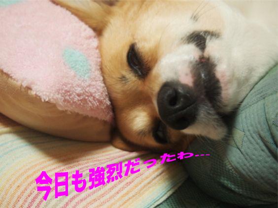4_201401211808579ae.jpg