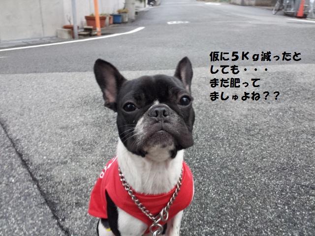 20121101_063010.jpg