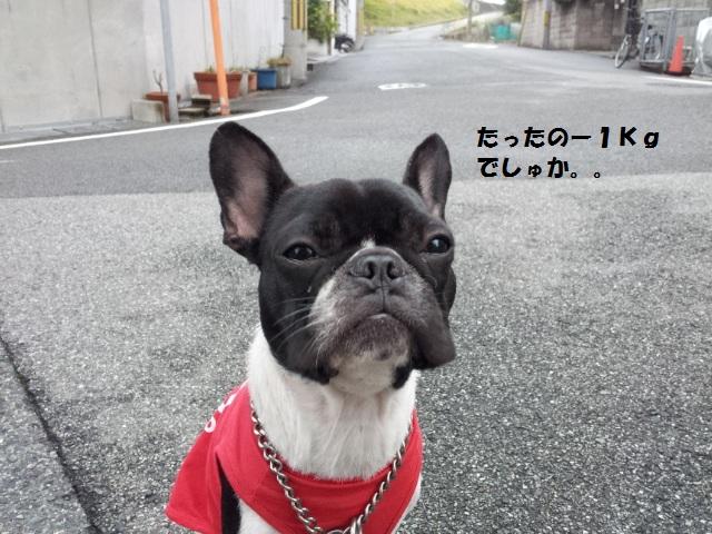 20121101_063014.jpg