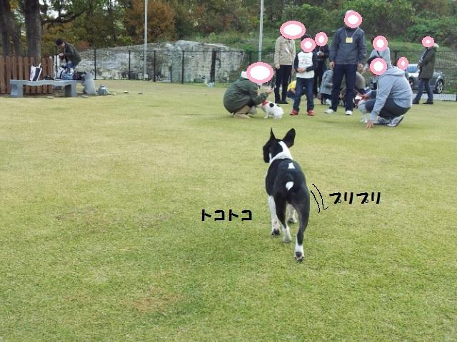20121118_104620.jpg