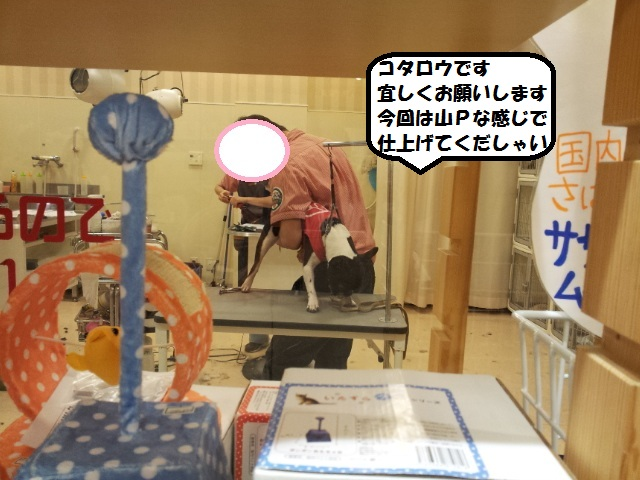 20121216_161926.jpg