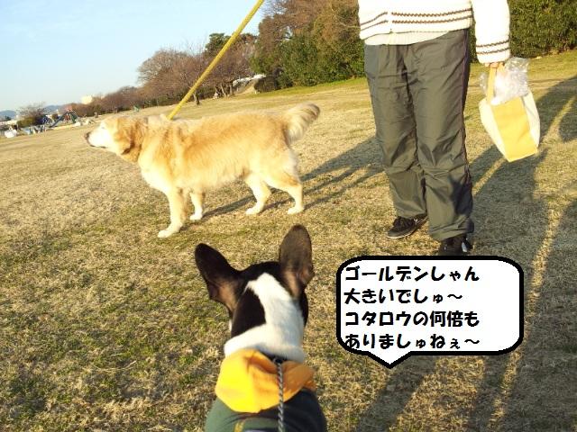 20130105_161021.jpg