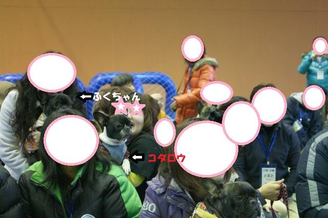 DSC00260_convert_20121125095903.jpg