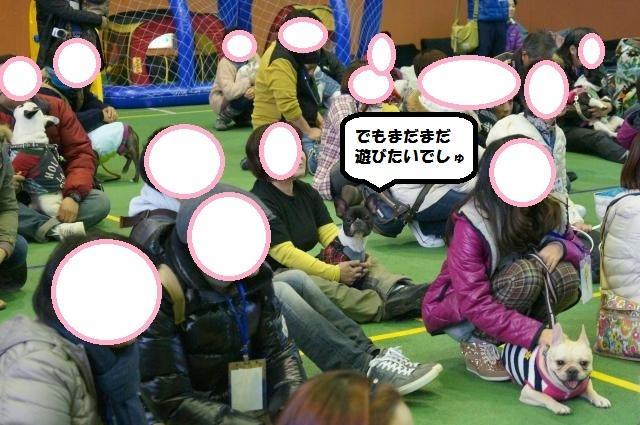 DSC00354_convert_20121129193944.jpg