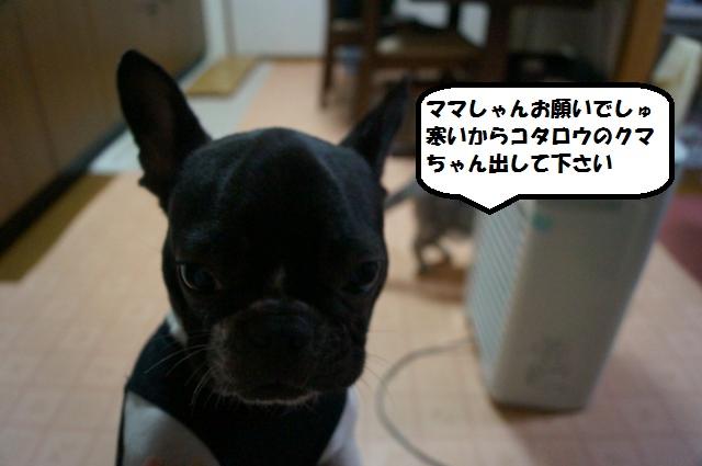 DSC00616_convert_20121206192925.jpg
