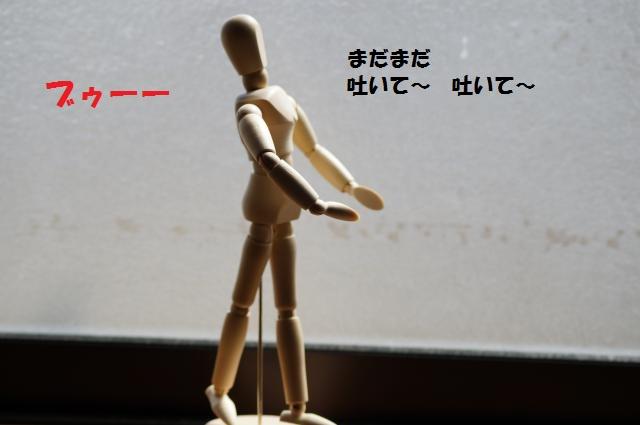 DSC01312_convert_20130309220546.jpg