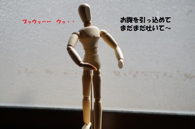 DSC01313_convert_20130309220635.jpg