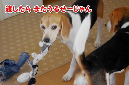 おもちゃ 6