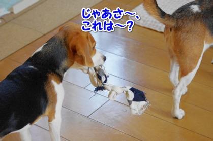 おもちゃ 3
