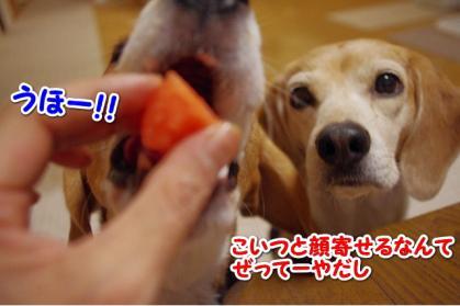 お見舞い 3