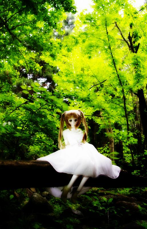 s_IGP3233-001.jpg