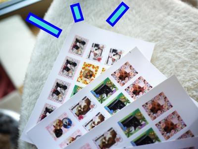 007_convert_20120629194444.jpg
