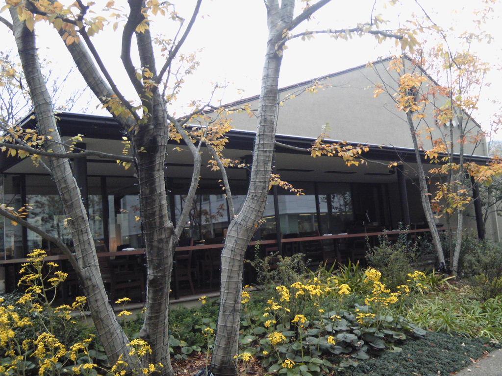 代官山2012#2