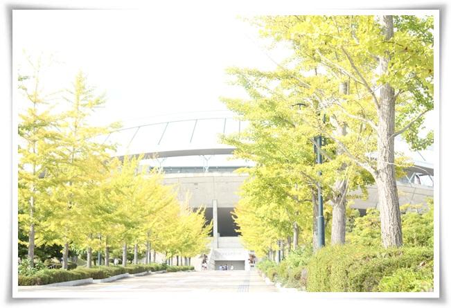 IMG_8925.jpg