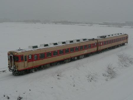 P1120045.jpg